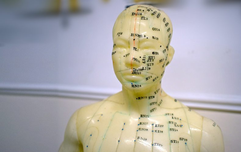 Acupuncture diagram model